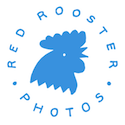Red Rooster Photos